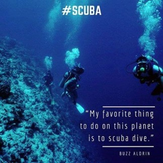 my favourite thing to do on this planet is scuba dive